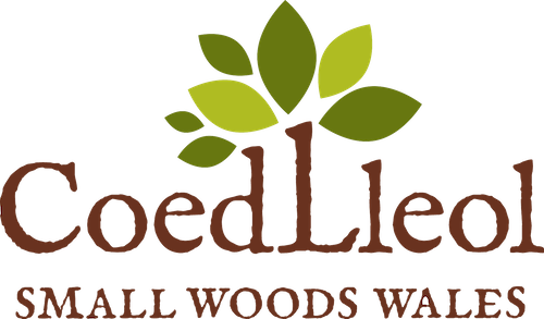 Woodland Wellbeing Course